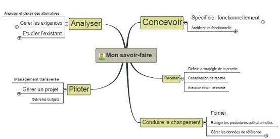 la moa pragmatique du si  business analysis  analyse d u0026 39 entreprise  maitrise d u0026 39 ouvrage